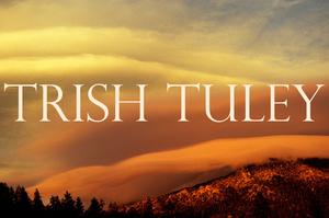 Trish+Tuley+Artist+Icons+WORKFILE.jpg