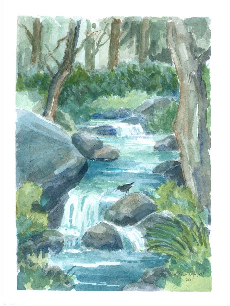 Geo Appel Bird on Rock in River in Forest 9x12.jpg