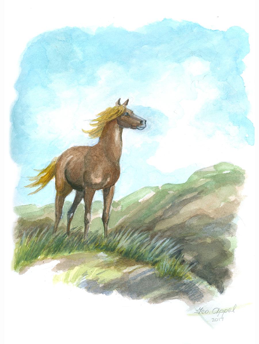 Geo Appel Wild Horse on Mtn Top 9x12.jpg