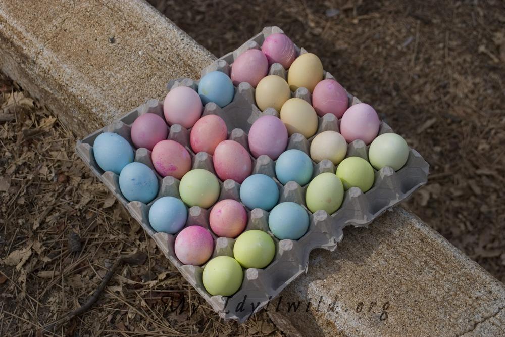 2018 Idy Easter Egg Hunt014.jpg