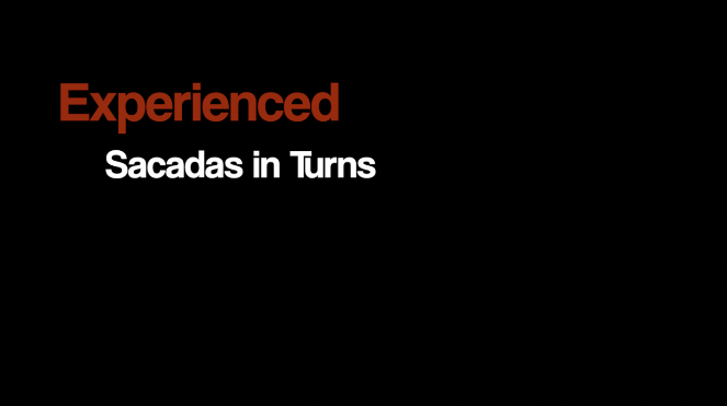 experienced.png