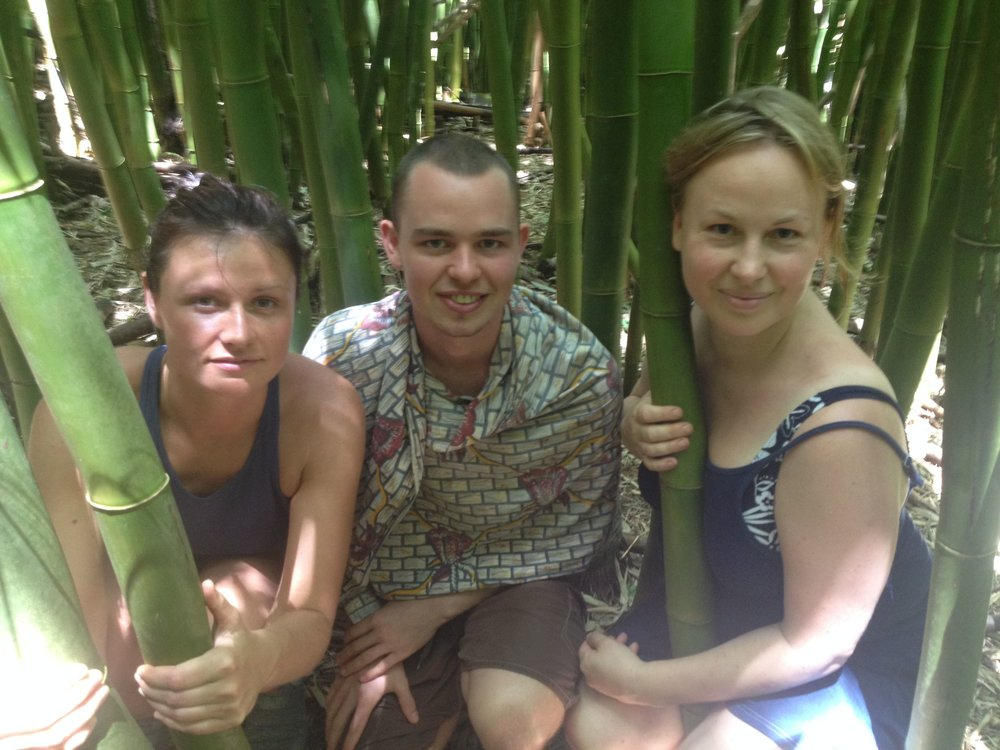 Apprenticeship Group in the Bamboo.jpg