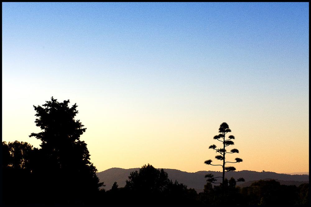 Trasierra_blog_05.jpg
