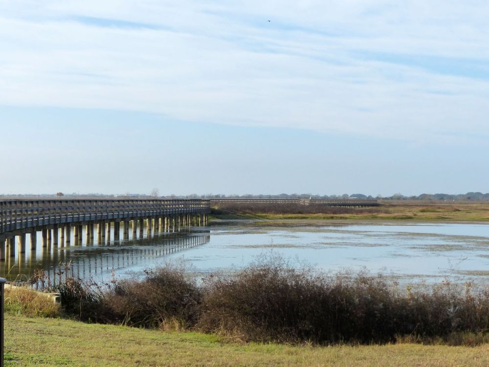 Elevated walkways over the wetlands
