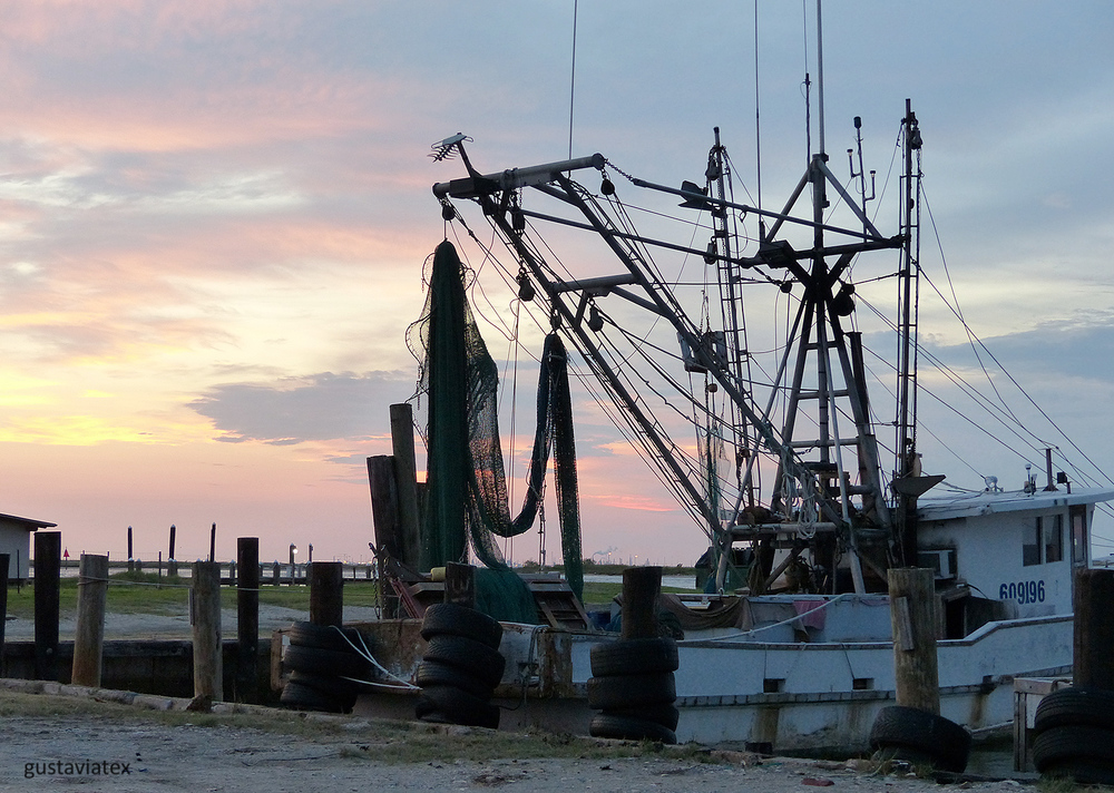Shrimp boats at sunset
