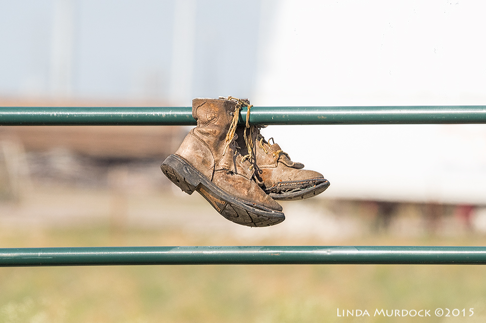 Two shoes on a green gate