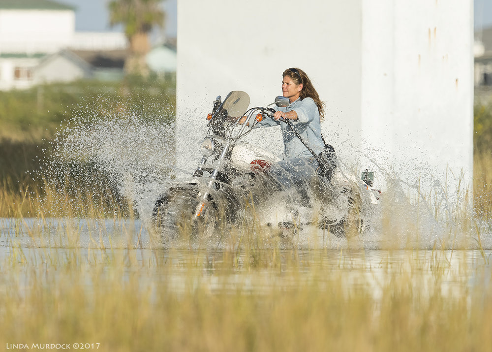 Motorcycle gal  Nikon D810 with NIKKOR 500mm f/4E VR + Nikon 1.4x TC ~ 1/2500  sec f/8.0 ISO 1250; tripod