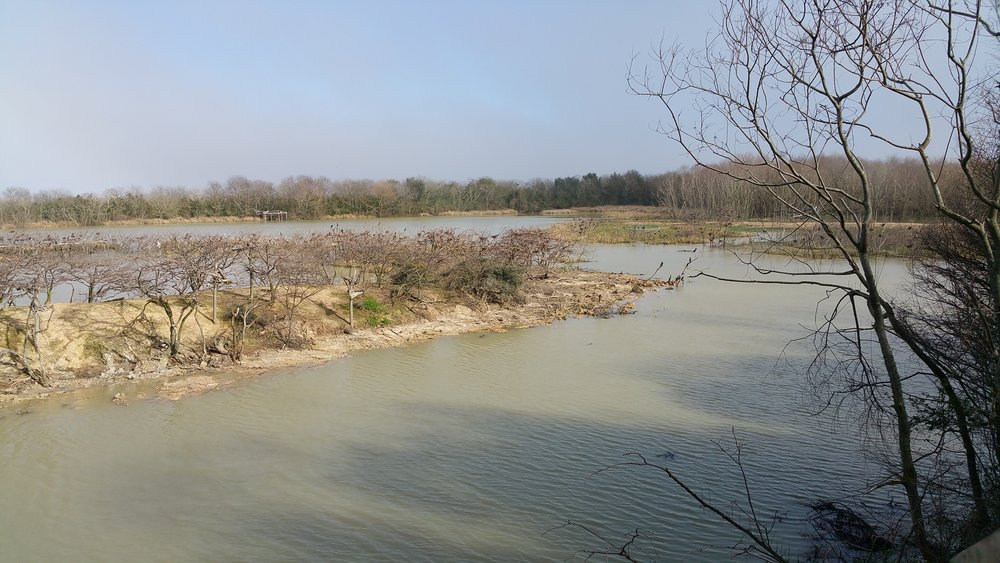 View from top of pay platform at rookery island Feb 16th - Galaxy 4 Note photo