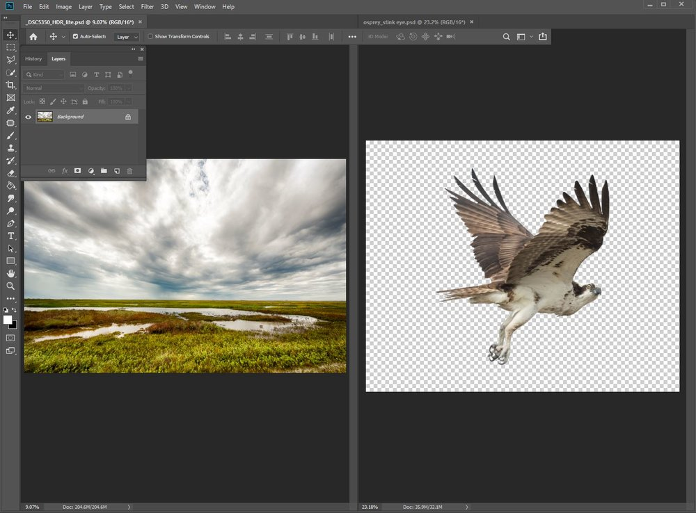 Dramatic sky image and Osprey on transparent background side-by-side on different tabs. Don't freak out if the bird is on the left instead of the right, it will be OK