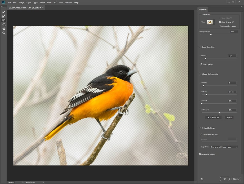 Select and Mask workspace is only available in Photoshop CC - this selection is shown on Onion Skin
