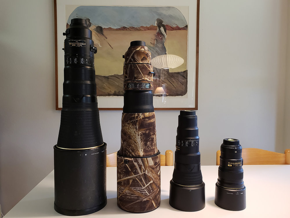 Bill's ginormous 600 f/4, my 500 f/4 in camo, the new tiny 500 f/5.6 PF and the 300 f/4 PF lens. Art in the background by Margret Wallace