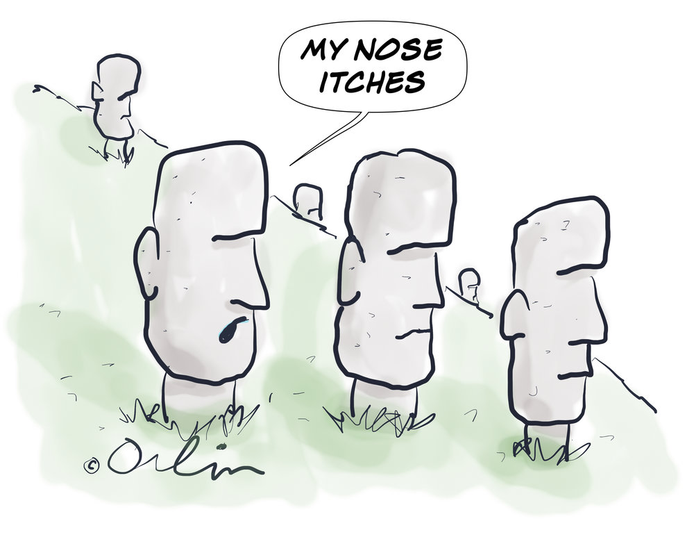 Mynoseitches.jpg