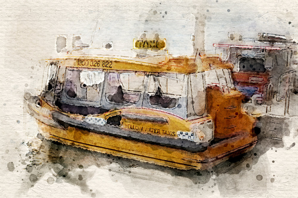 Water Taxis, Sydney Harbour