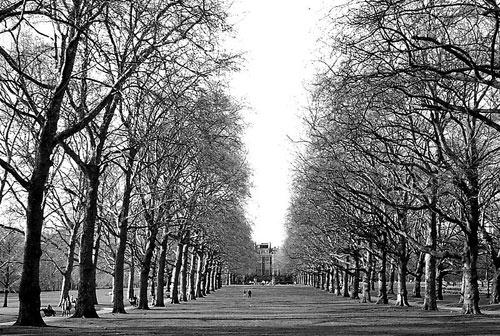 green-park.jpg