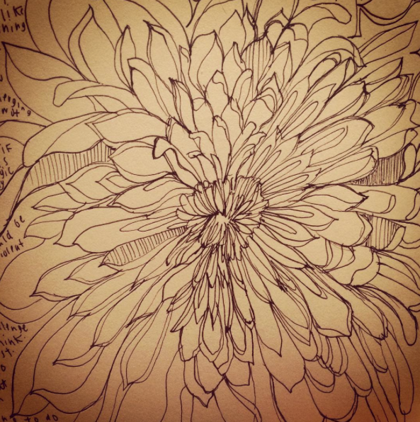 Something so cozy and meditative to curl up with your sketchbook, study an intense flower and just draw.. Not worrying about the outcome.. That really is magic of art making to me.. Believe and let go.