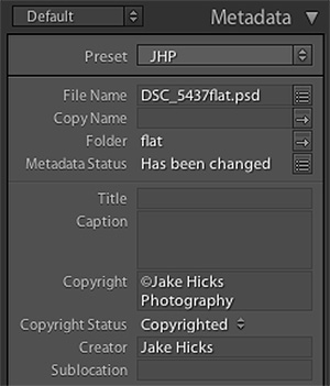 The finished populated metadata window