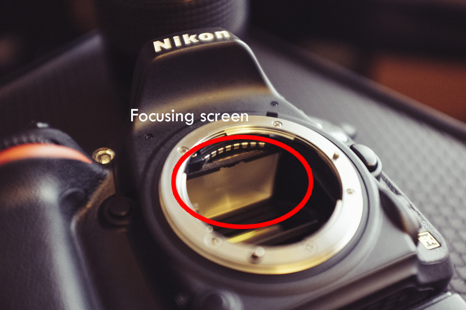 The focusing screen is situated at the base of the pentaprism in our DSLRs. Accessing and replacing or changing it is relatively simple.