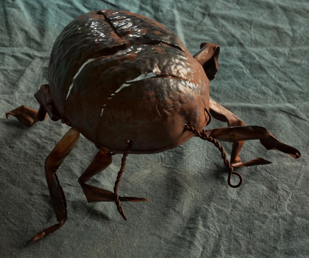 Pooball Beatle/ Escarabajo Pelotero
