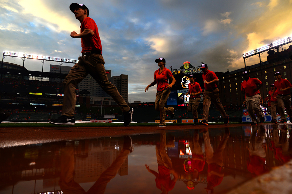 Members of the Baltimore Orioles grounds crew run onto the field during a rain delay to remove the tarp at Oriole Park at Camden Yards in Baltimore, Maryland on June 10, 2014.