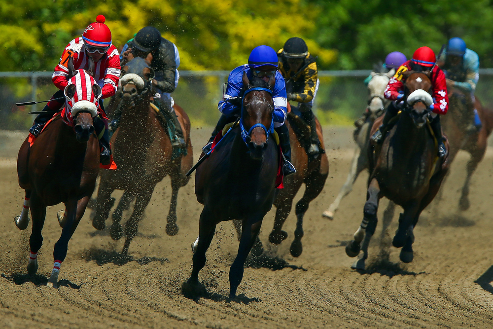 Racing one day prior to the 140th Preakness Stakes at Pimlico Race Course on May 15, 2015 in Baltimore, Maryland.