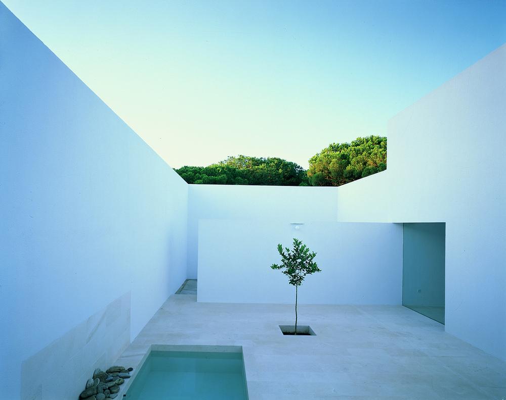 Photography: Hisao Suzuki