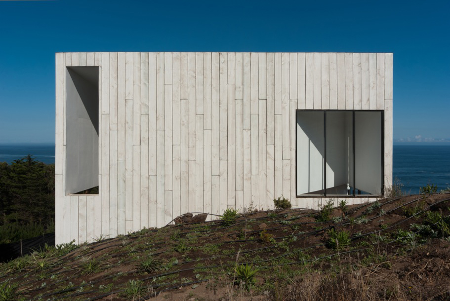 Casa D by  Panorama and WMR the-tree-mag 100.jpeg