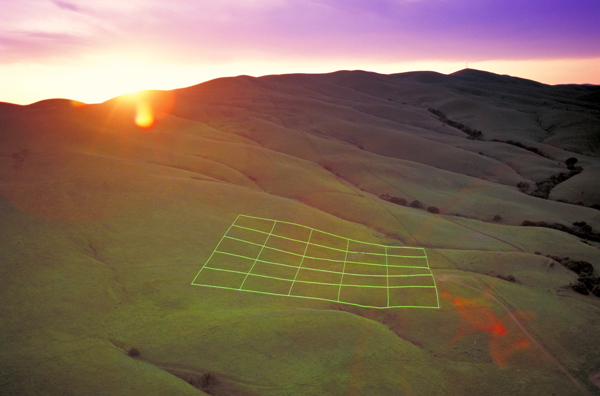 Luminous Earth Grid by Stuart Williams the-tree-mag 10.jpg