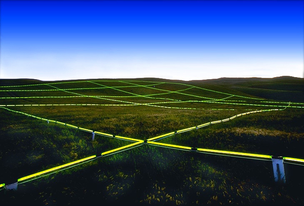 Luminous Earth Grid by Stuart Williams the-tree-mag 15.jpg