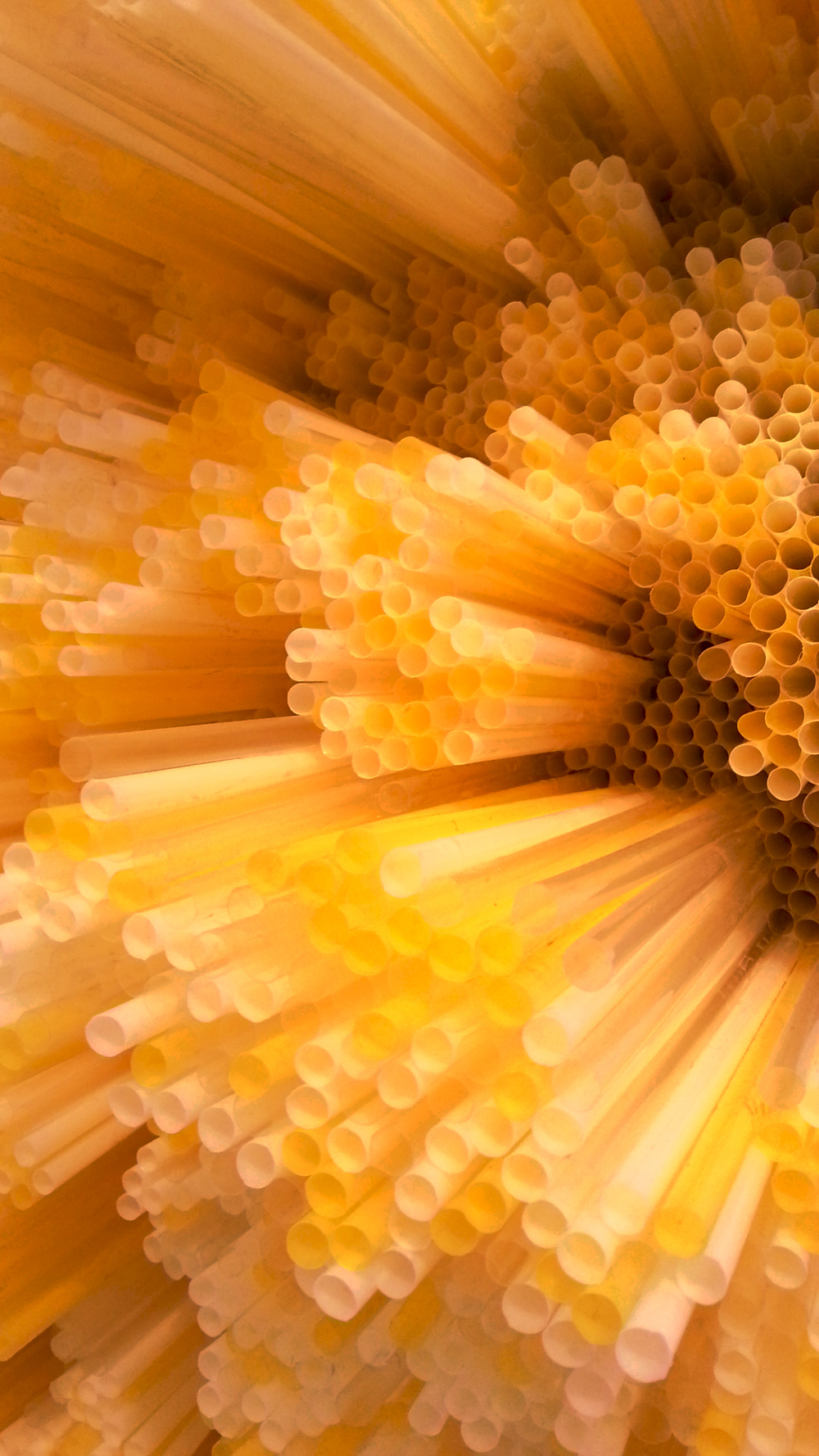 Straws by Francesca Pasquali the-tree-mag 40.jpg