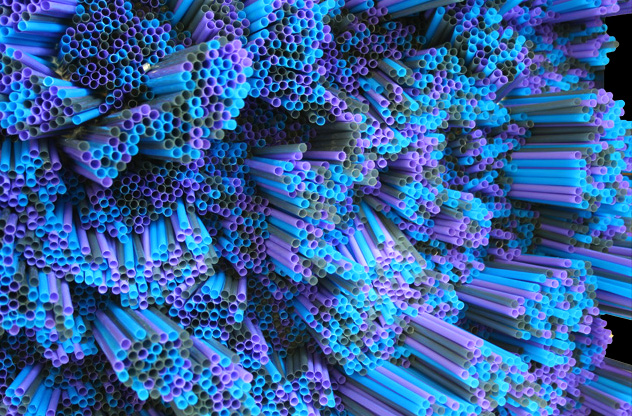 Straws by Francesca Pasquali the-tree-mag 80.jpg