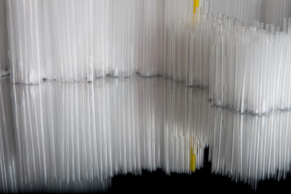 Straws by Francesca Pasquali the-tree-mag 160.jpg