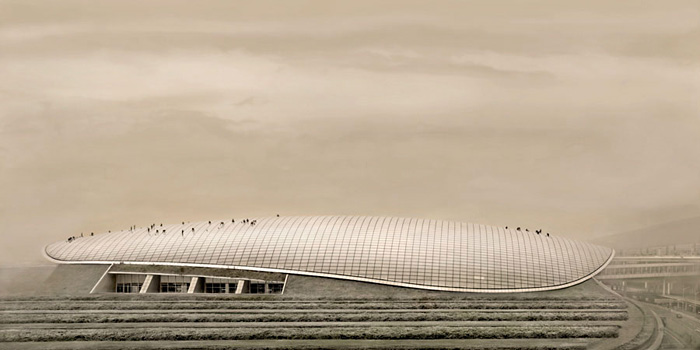 "China  Airport Beijing, 2012 - ed. of 8 - D-print  39.4"" x 78.7"" (100 x 200 cm)"