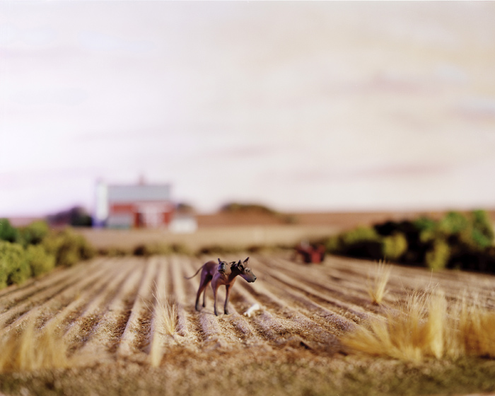 Accidentally Kansas by Lori Nix the-tree-mag 160.jpg