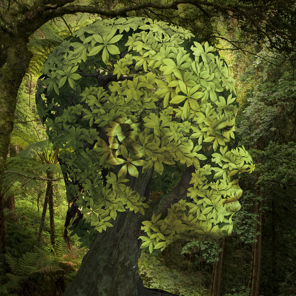 Illustration by Igor Morski the-tree-mag 50.jpg