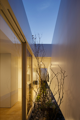 mA-style architects the-tree-mag 130 copia.png