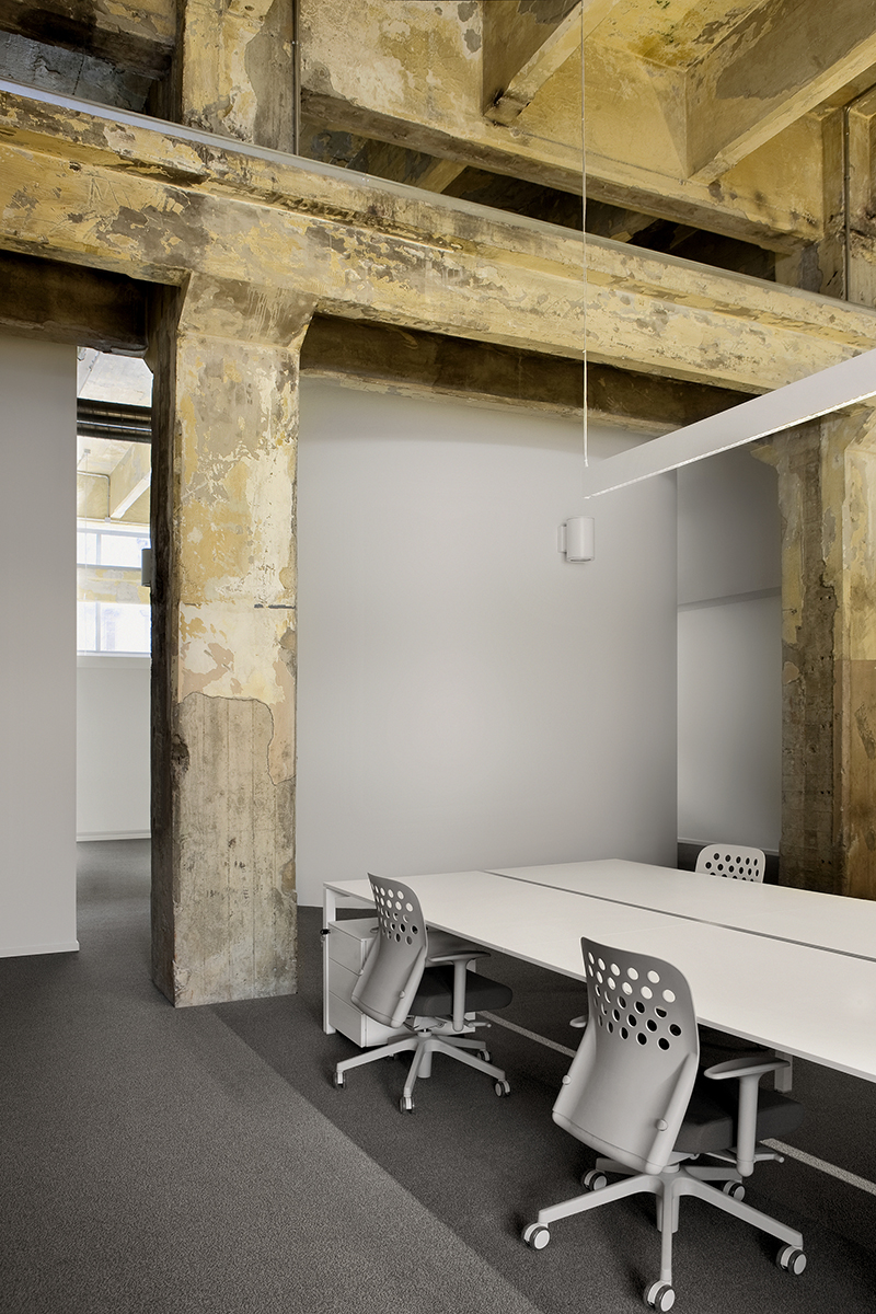 Sempla Offices by DAP Studio the-tree-mag 100.jpg