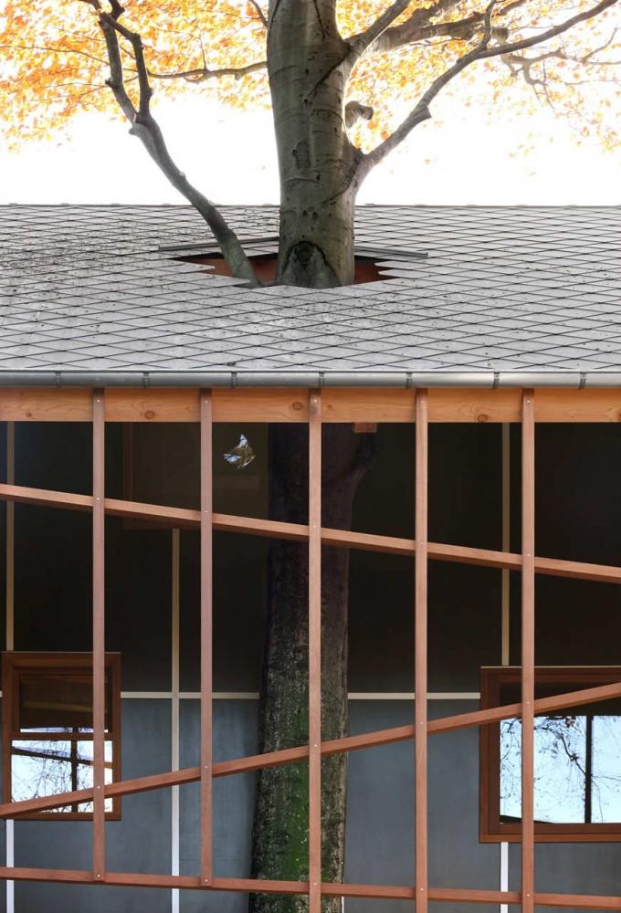 house-bernheimbeuk-by-architecten-de-vylder-vinck-taillieu-the-tree-mag-100.jpg