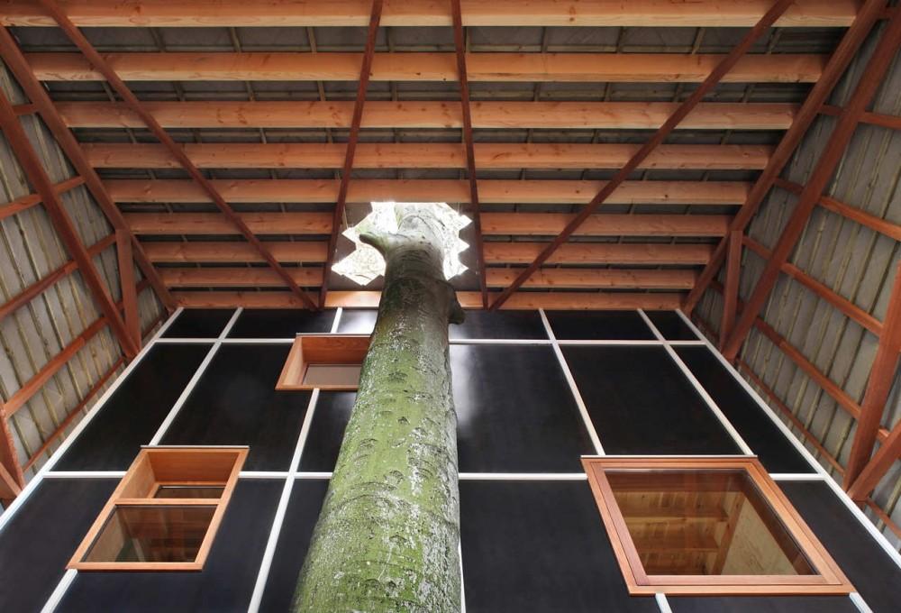 house-bernheimbeuk-by-architecten-de-vylder-vinck-taillieu-the-tree-mag-110.jpg