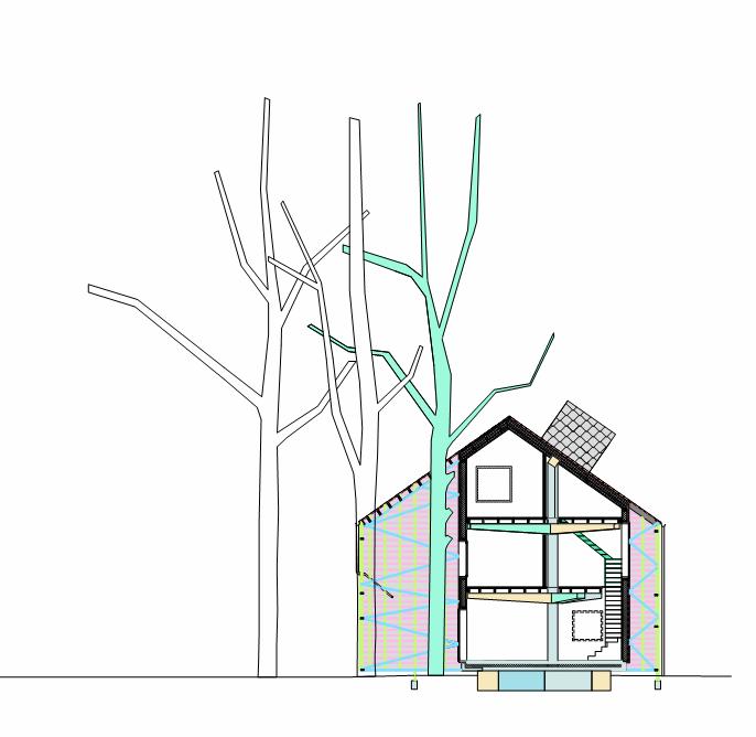 house-bernheimbeuk-by-architecten-de-vylder-vinck-taillieu-the-tree-mag-240.png