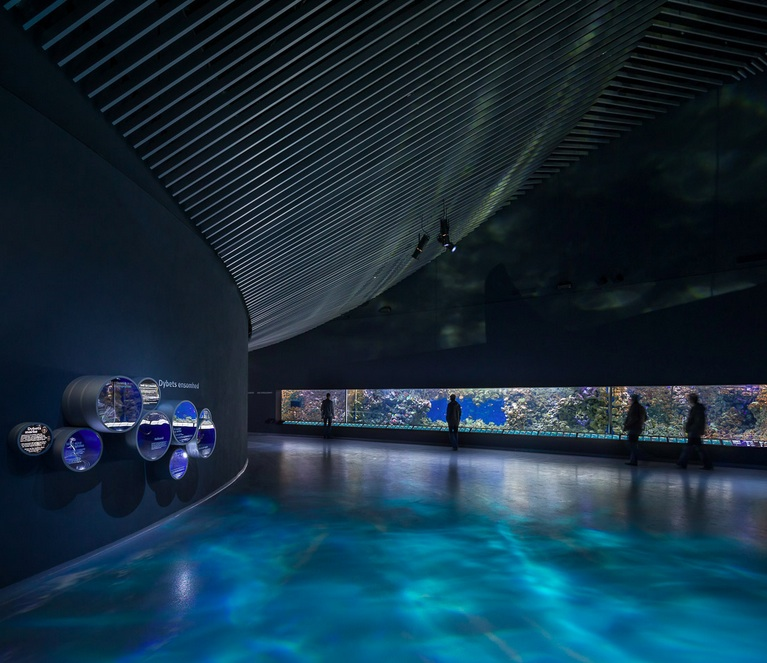 the-blue-planet-by-3xn-the-tree-mag-290.jpg