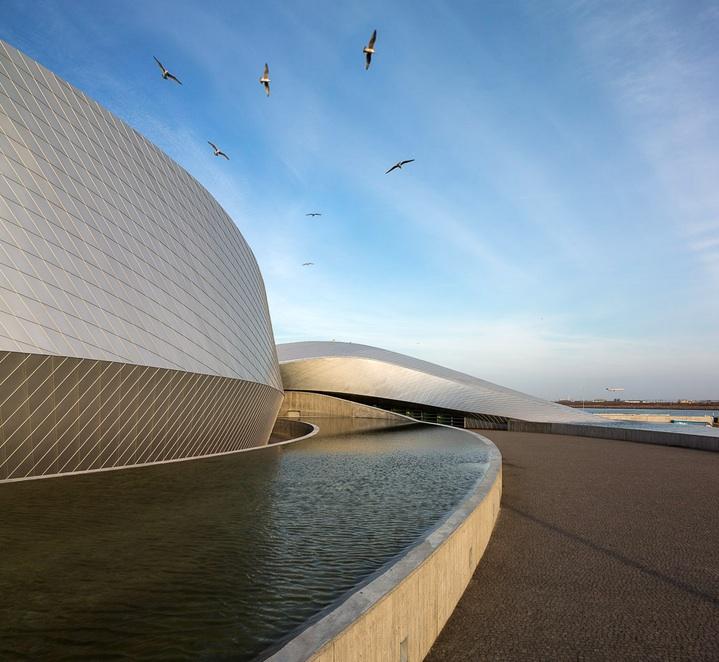 the-blue-planet-by-3xn-the-tree-mag-100.jpg