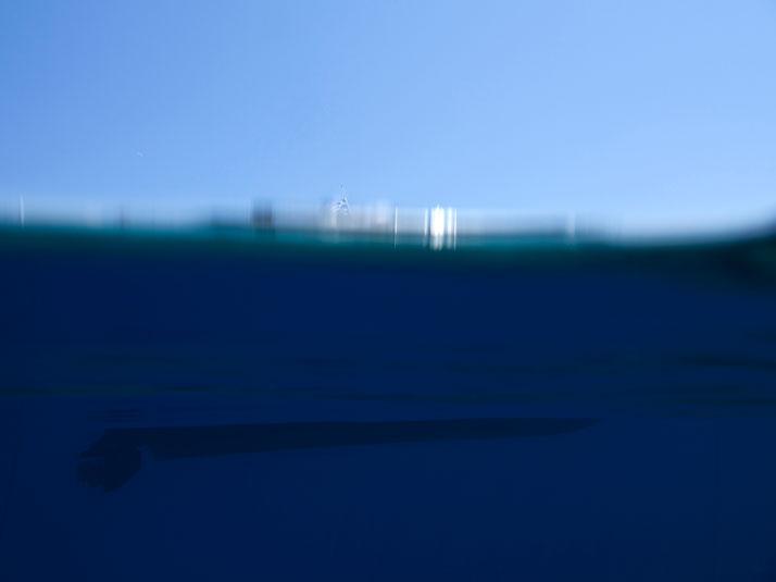 sea-through-by-marina-vernicos-the-tree-mag-10.jpg
