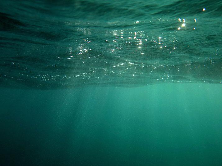 sea-through-by-marina-vernicos-the-tree-mag-80.jpg