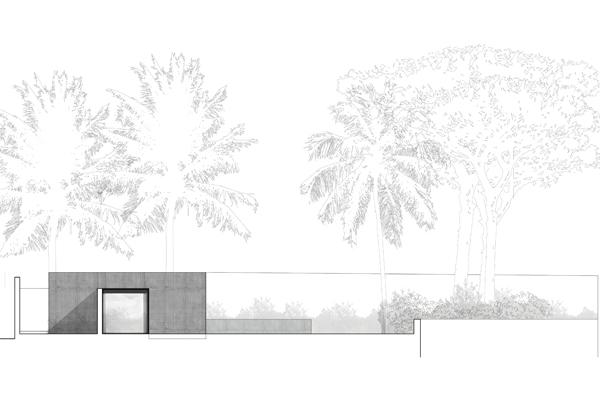 s-house-by-nicolas-schuybroek-the-tree-mag-140.jpg