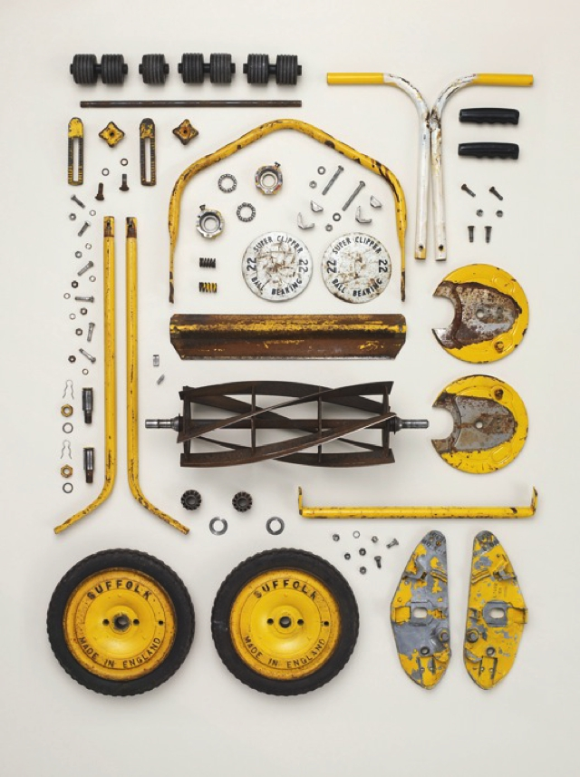 things-come-apart-by-todd-mclellan-the-tree.-mag-100.jpg