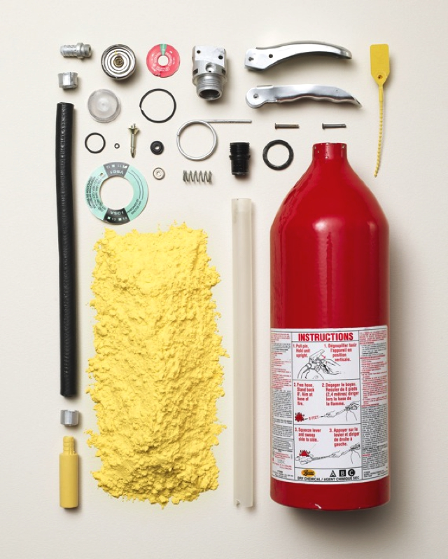 things-come-apart-by-todd-mclellan-the-tree.-mag-120.jpg