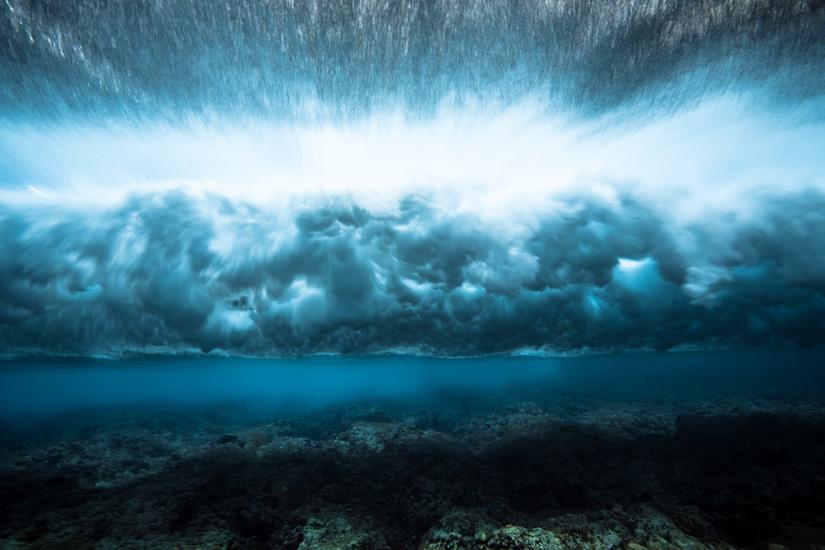 underwater-by-mark-tipple-the-tree-mag-10.jpg