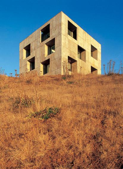 the_tree_mag-poli-house-by-pezo-von-ellrichshausen-60.jpg