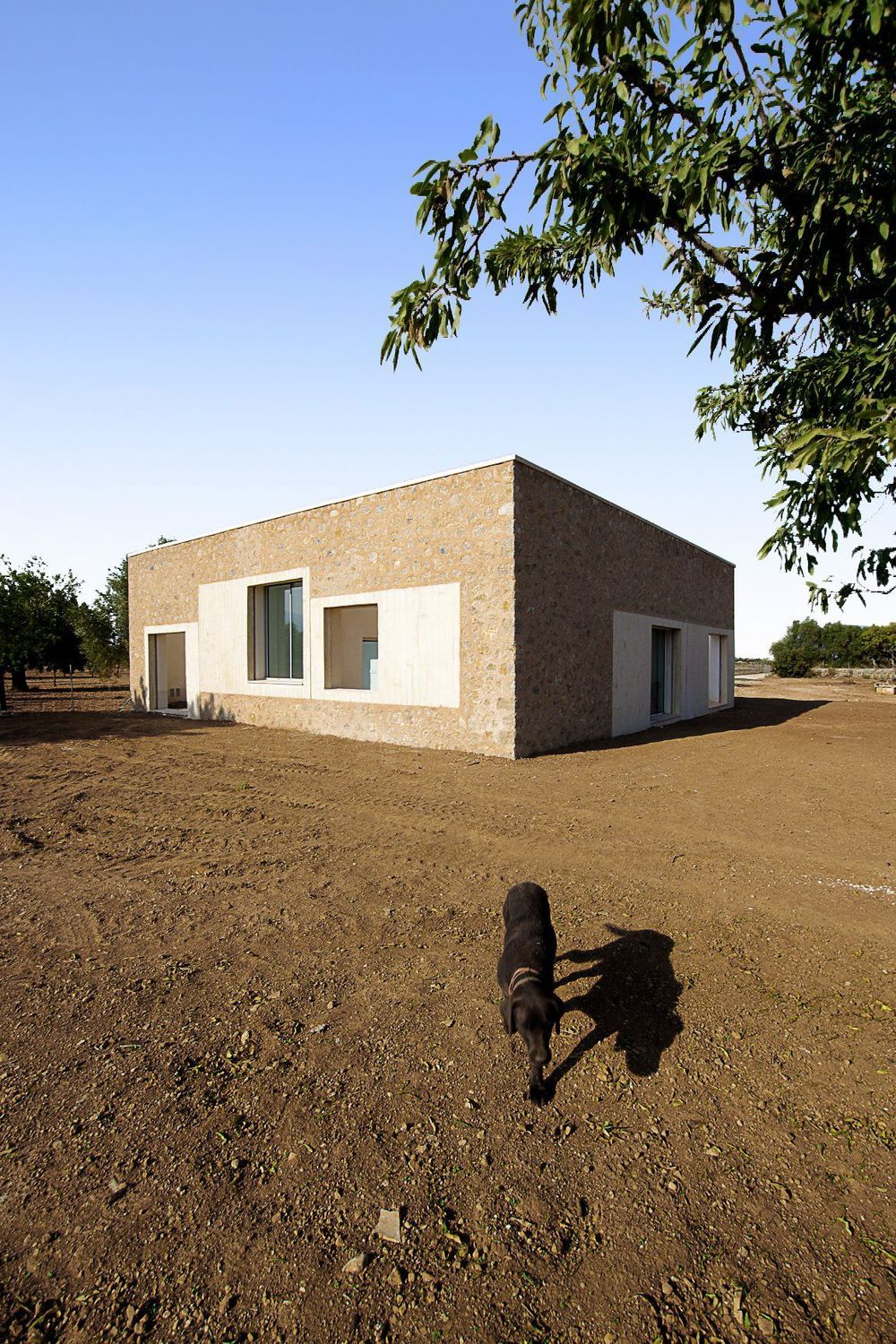 the_tree_mag-can-llus-i-neullia-by-teda-arquitectes-20.jpg