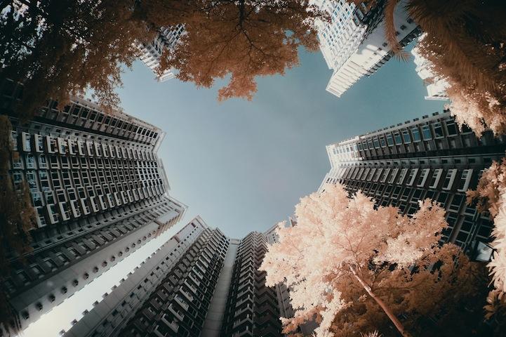 the_tree_mag-photographs-by-yiu-yu-hoi-160.jpg